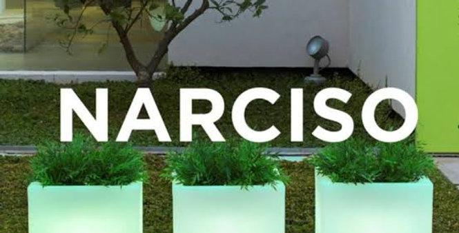 Maceta Narciso 50 Smartech