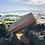 Thumbnail: SandyBrush