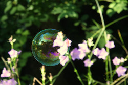 Bubble-Green
