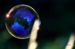 Bubble-Dark Blue