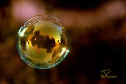 Bubble-Yellow Sky