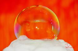 Bubble-Orange