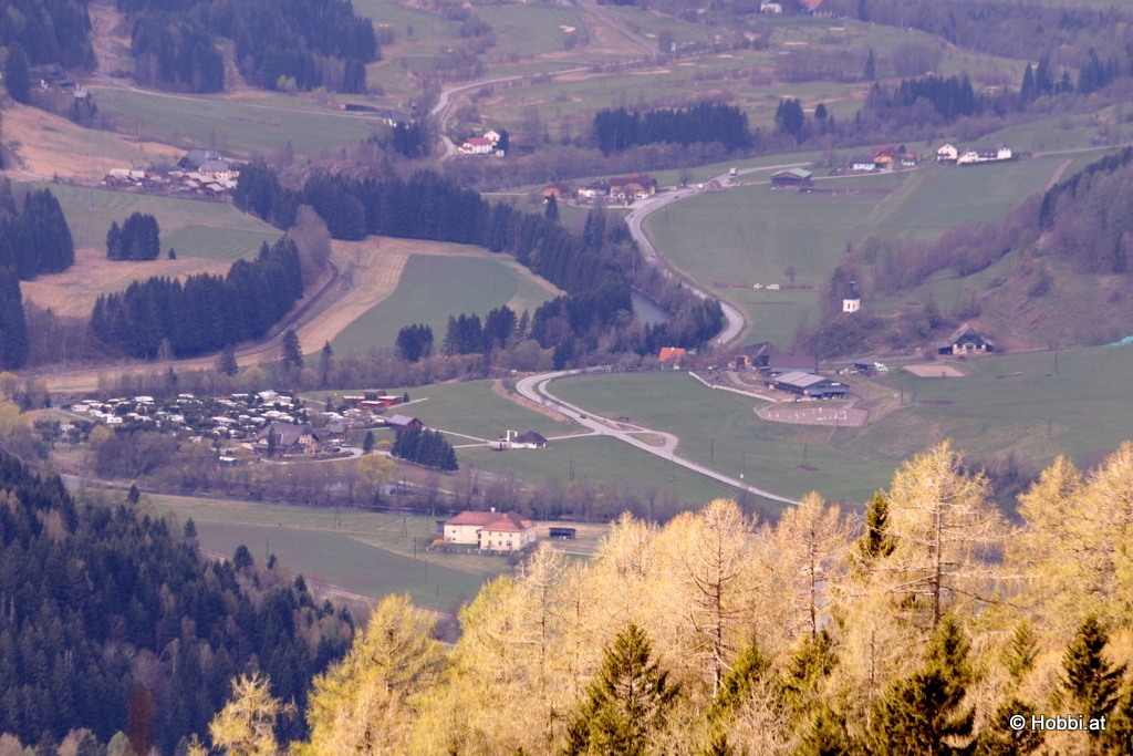 Olachgut
