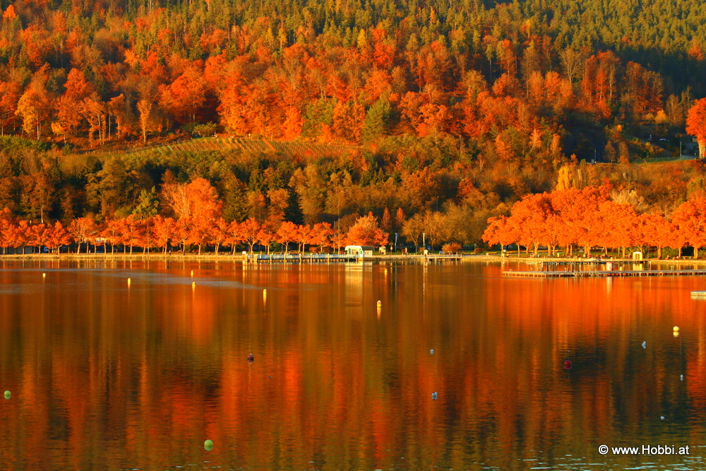 Colorful Carinthia