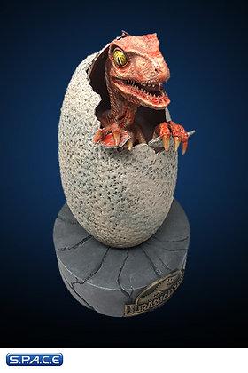 1:1 Raptor Hatchling