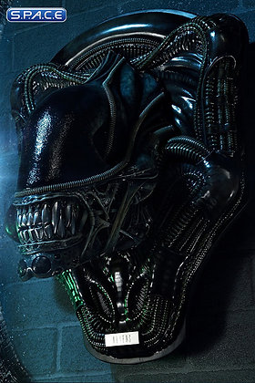 Warrior Alien Head Trophy 3D Wall Art (Aliens) Prime 1 Studio