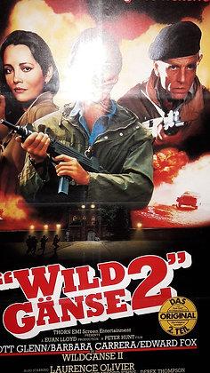 Wild Gänse 2
