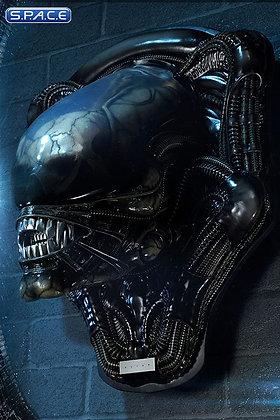 Big Chap Head Trophy 3D Wall Art (Alien)