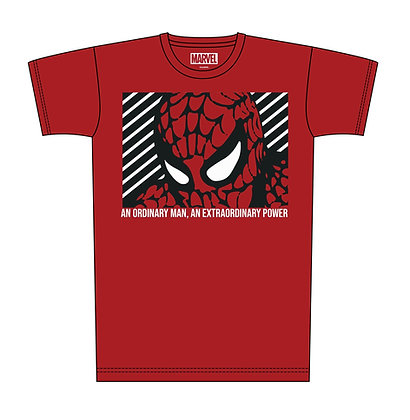 Spiderman – Extraordinary Power