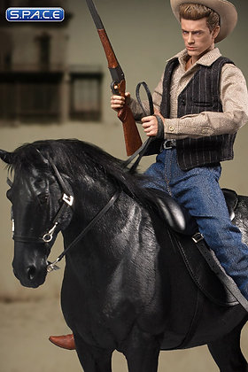 1/6 Scale James Dean Deluxe Version (Giant)