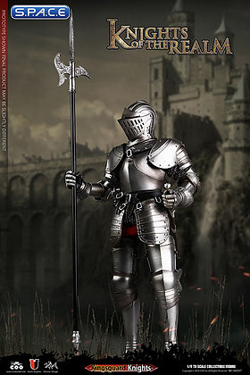 1/6 Scale Kingsguard Knight (Knights of the Realm)