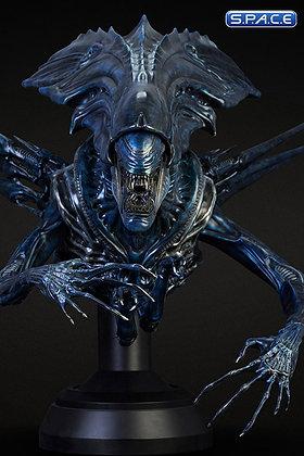 1/3 Scale Alien Queen Bust
