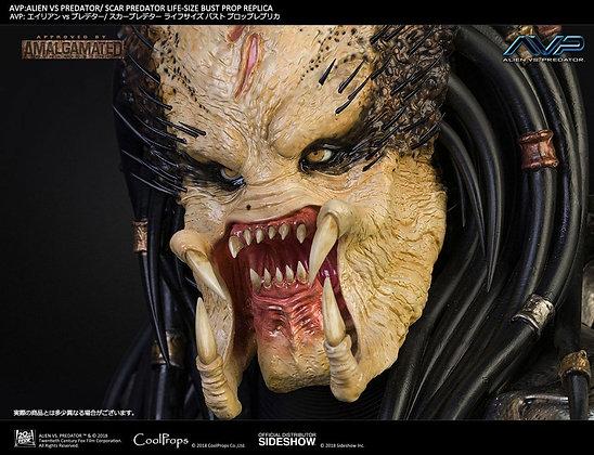 1:1 Scar Predator Life-Size Bust (Aliens vs Predator)