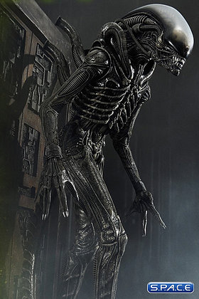 Alien Big Chap 3D Wall Art (Alien) Prime 1 Studio