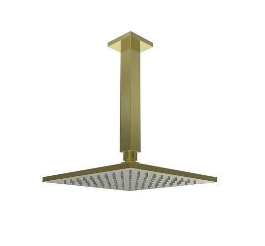 Brunetti Overhead Ceiling Shower Brushed Gold