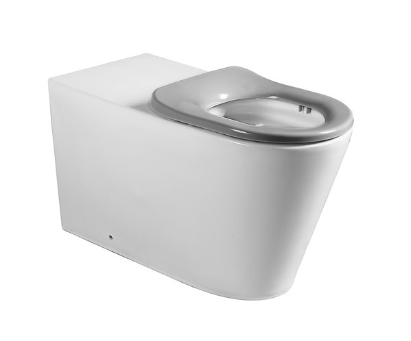 Bassini Care Wall Faced Toilet Suite