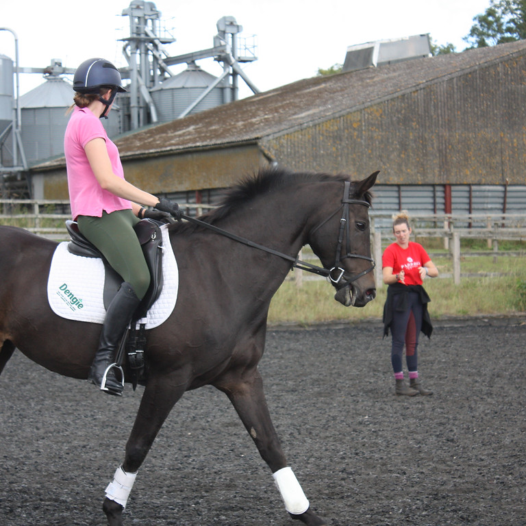 Gingerbread Equestrian Clinic - May