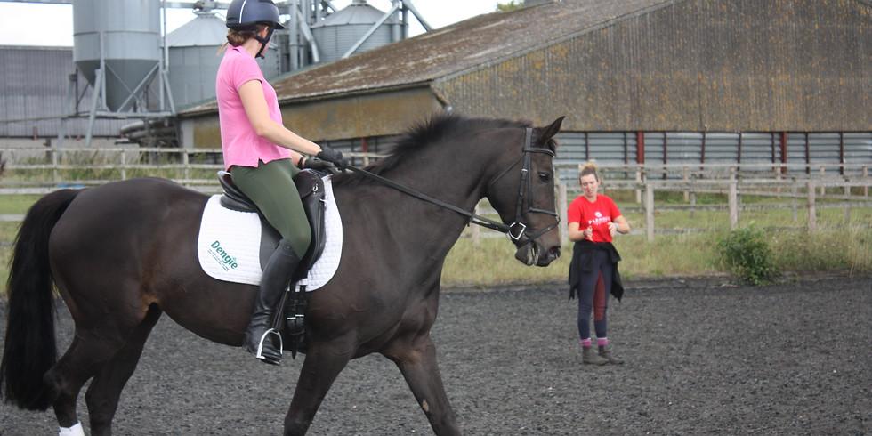 GingerBread Equestrian Clinic