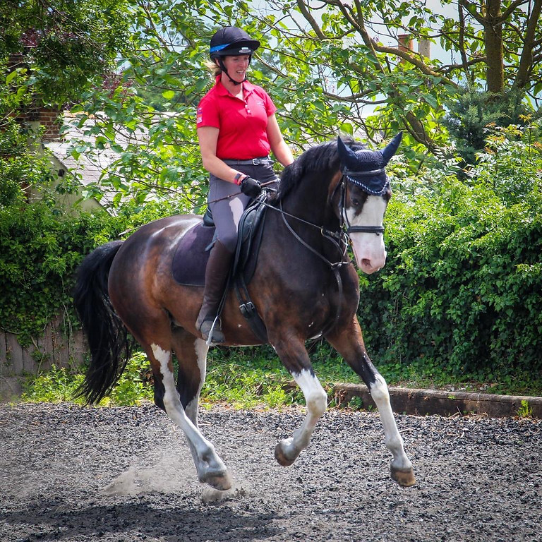 Test Riding Clinic - Bluebell Farm, Andover.