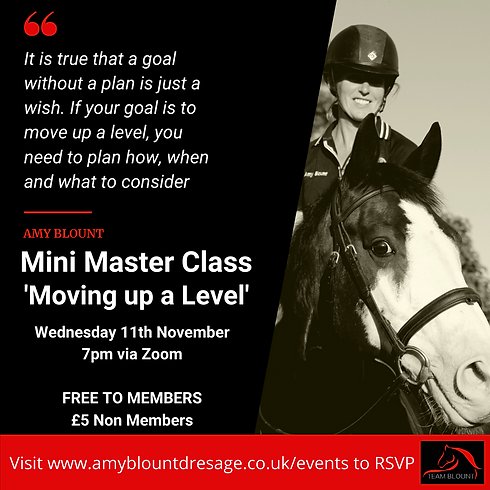 Members Mini Master Class -'Moving up a Level'