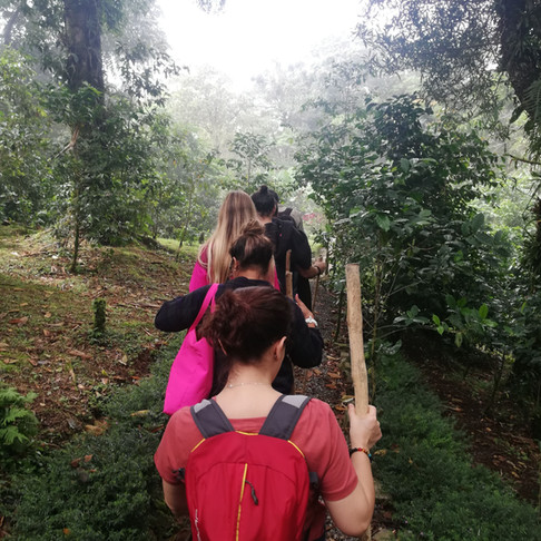 Educación, Naturaleza y diversión en Boquete - Pa Que Sepas Del Trip