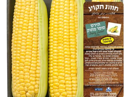 """""""חוות תקוע"""" החלה בשיווק תירס מזן """"סופר מתוק"""" Super Sweet Corn -"""