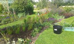 Planting new flower bed designing