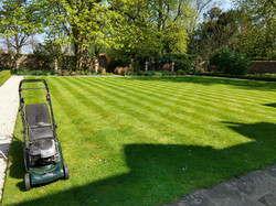 Stripes on one of our lawns