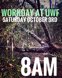 Workday at UWF (10/3/20)