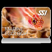 marine eco.png