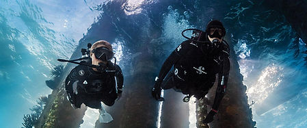 scuba-diving-specialies_1200x500.jpg