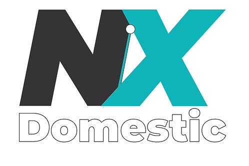 NX Domestic   100 ml Spray