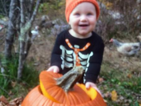 Pumpkin Art at the Book Mill
