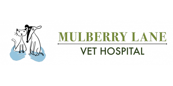 Mulberry Lane Vet Hospital