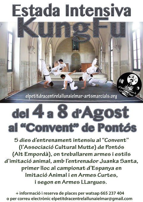 cartellxweb-Estada-KungFu-Adults-21.jpg