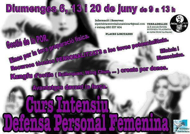 Cartell-Defensa-Persona-Curs-estiu21-ver