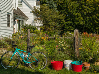 The Bicycle Coalition of Maine Wins Source Award