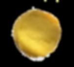 Ein goldener Kreis-steht für die Rundumbehandlung die Sie im Implantatzentrum Osnabrück erfahren: von der Prophylaxe bis hin zu Implantaten biete die Zahnarztpraxis Dr. Dousti Ihnen das gesamte Spektrum der modernen Zahnheilkunde