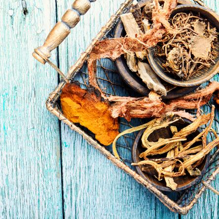 צמחי מרפא שונים בטיפול ומניעה בסוכרת