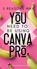 5 reasons you need to be using to Canva Pro to grow your blog and create good graphics that convert readers to leads.