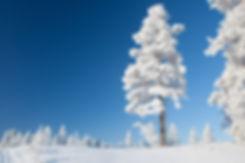 Talvi-Health&Spa-240.jpg