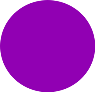 bright purple circle.png