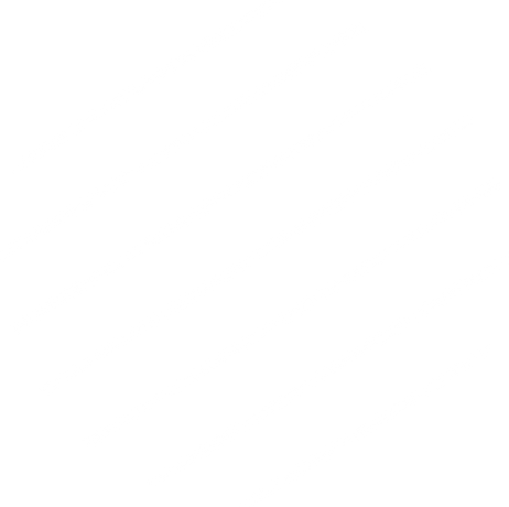 white lines.png
