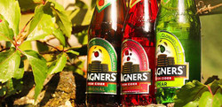 magners (1)
