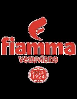fiamma logo