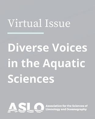 LOB-Diversity-Virtual-Issue-Nov-2020_edi