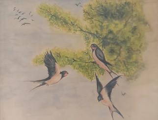 Kirlangicler 25x35 watercolor framed