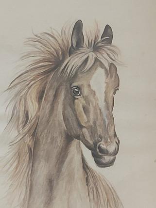 At 20x26cm Watercolor