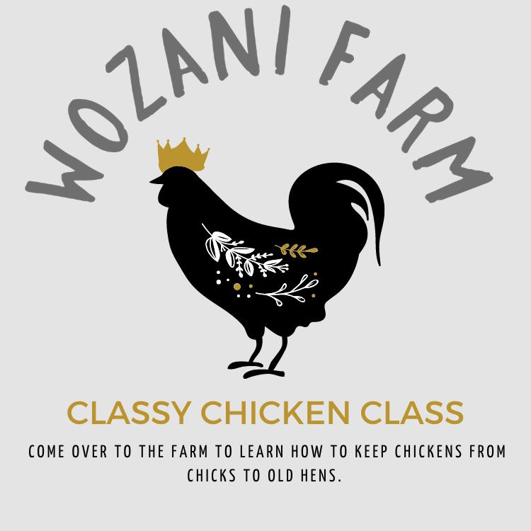 Classy Chicken Class