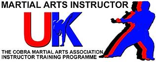 MAIUK Logo copy.png